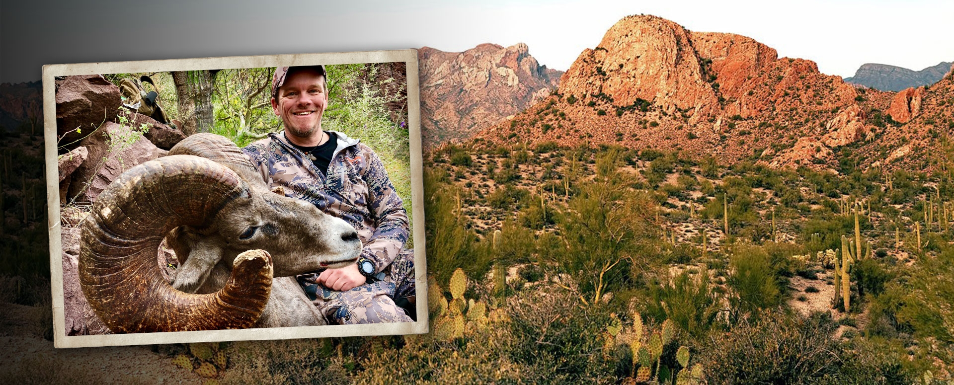 Desert Sheep Hunts Mexico | Bighorn Sheep