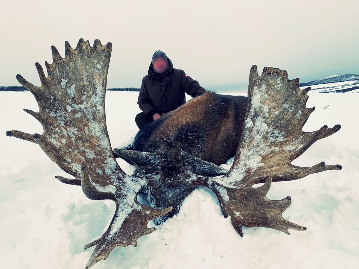Moose Hunting Packages Russia
